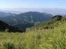 草原美景2