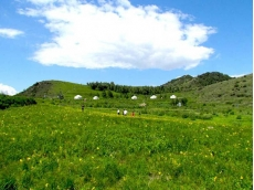 云中草原1